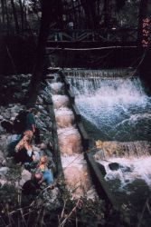 Roy's Dam is in Lagunitas Creek, CA and suffered from a non-functioning fish ladder Photo