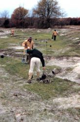 Volunteers plant near the newly restored stream bank where meanders have been added. Photo