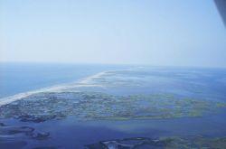 An aerial view of Chandeleur Islands. Photo