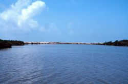 A view from Locust Bayou stub canal toward the Gulf of Mexico. Photo