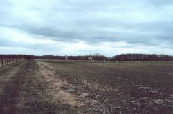 Land being considered for protection, Salem County, NJ Photo