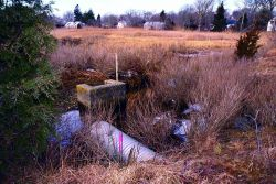 An overview of the marsh and the culvert that restricts water from flowing from Quivett Creek into the marsh Photo