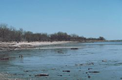 The mud and sand flats of the Delaware River at the entrance to the tide gates Photo