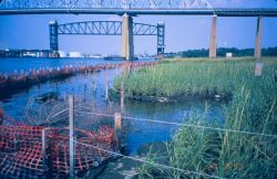 Bridge - Arthur Kill Waterway, Richmond County, New York Photo