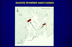 A schematic showing areas designated for the quahog spawner sanctuaries. Photo