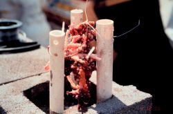 PVC pipes are used to protect the Oculina varicosa and to provide stability during the restoration. Photo
