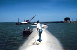 A polyester geotube at Barren Island. Photo