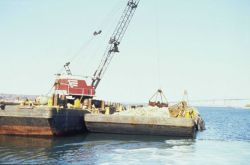 The reef construction operation. Photo