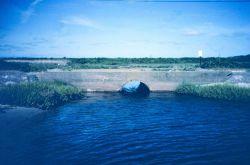 The main tidal creek of Maidford River that enters Sachuest Marsh near Third Beach. Photo