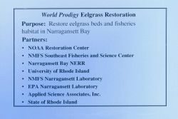 A slide describing the purpose of the eelgrass restoration and its partners Image