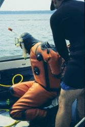 The first in a series of images showing NOAA scientists at the 1997 transplant site just before transplanting the eelgrass turf Photo