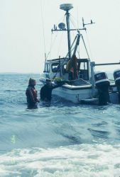 A RI EPA vessel was donated for the 1997 transplant operation Image