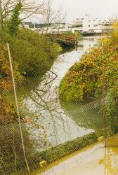 Hamm Creek, a Coastal America project to clean channel to provide better habitat conditions for spawning salmon Photo