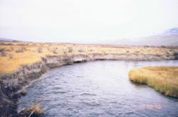 Little Eightmile ranch, another view of the eroding habitats. Photo
