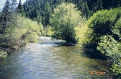 An image of the middle section of Panther Creek. Image