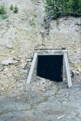 An adit or mine opening at Blackbird Mine. Image