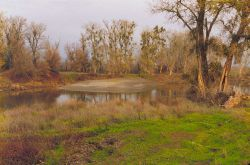 A meander in the Sacramento River just above Wilkins Slough. Image