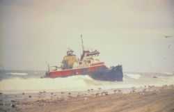 The tug, Scandia, grounded in a winter storm was pulling the North Cape The barge carried approximately 828,000 gallons of home heating when tug and b Photo