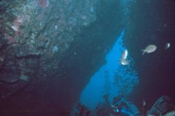 Divers in a passage through the rocks. Photo