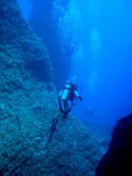 Diving along coral pinnacle structures Photo