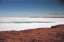 Looking towards Tigvariak Camp across lagoon ice Photo