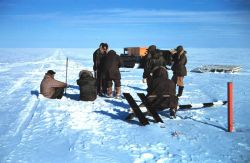 Baseline measurements on the lagoon ice - note stakes along line Photo