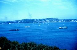 Ferry boats plying Puget Sound Photo