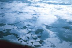 Passing over ice floes while flying to McMurdo Station Photo