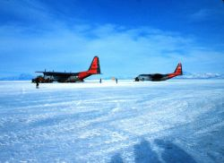 Ski-equipped C-130's ready for a trip to the South Pole Photo