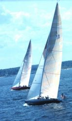 Sailboats racing in America's Cup off Newport Photo