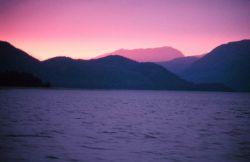 A pinkish glow suffusing a Southeast Alaska sunset. Photo