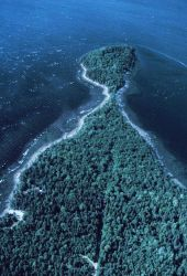 Apparently a tree-covered peninsula with a rocky shoreline Photo