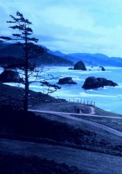 Looking south at Ecola State Park, about 5 miles south of Seaside. Photo