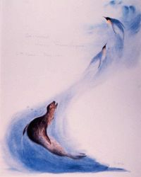 Water color by Edward Wilson of leopard seal pursuing penguins Photo