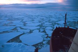 Sunset over sea ice at the marginal ice zone as NATHANIEL B Photo