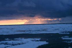 The marginal ice zone (MIZ) Photo