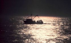 A small fishing boat caught in the sparkle of the late afternoon sun. Photo