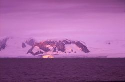Iceberg highlighted by the sunrise. Photo