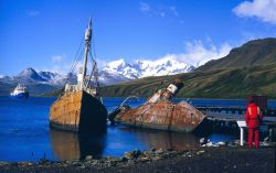 Abandoned whaling boats at Grytviken Photo