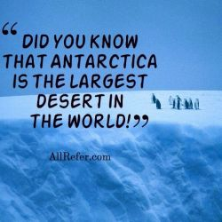 Did you know that Antarctica is the largest desert in the world! Photo
