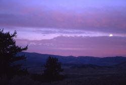 Moon at sunrise near Slough Creek Photo