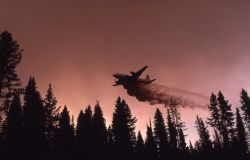 Bomber dropping liquid retardant Photo