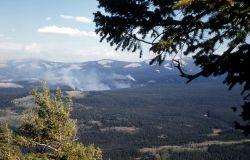 Blacktail fire as seen from Bunsen Peak Photo