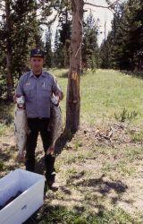 Jeff Lutch holding two Lake Trout Photo