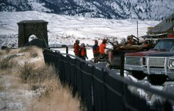 Hunters with recently killed elk on Front Street in Gardiner, Montana Photo