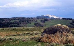 Glacial erratic, precambrian granite boulder at Blacktail Plateau - Geology - Glacial Photo
