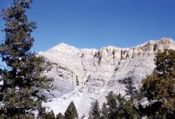 Stroam Channel in wall of the Gardner Canyon - Geology Photo