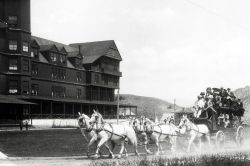 Six horse stagecoach at the Mammoth Hotel Photo
