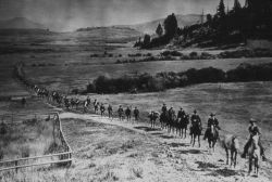 Line of Cavalry in Lamar Valley Photo