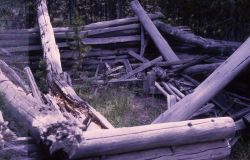 Fallen log cabin at Bridge Bay Photo